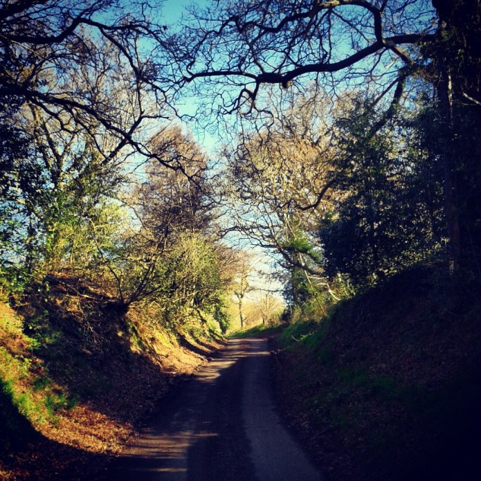 Long House Lane, heading north towards Warninglid