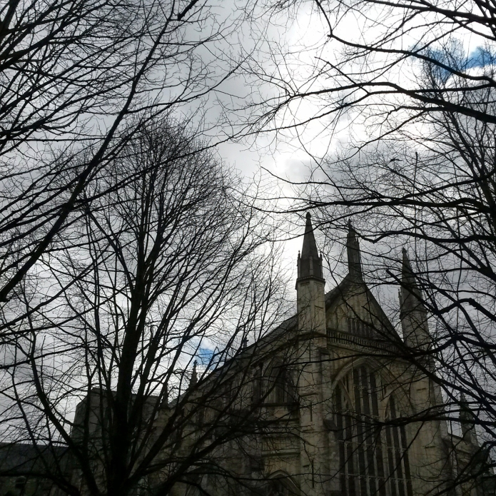 60 km in and the second cathedral of the day at Winchester.