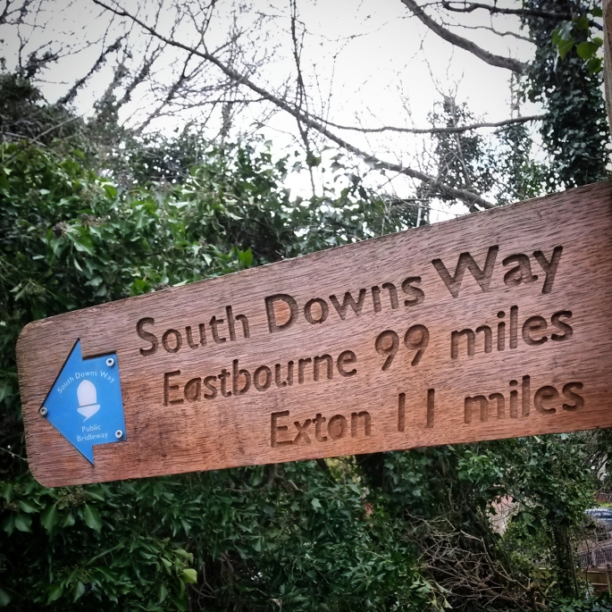 In order to avoid some busy road junctions out of Winchester decided to join the South Downs Way for a few kilometres.