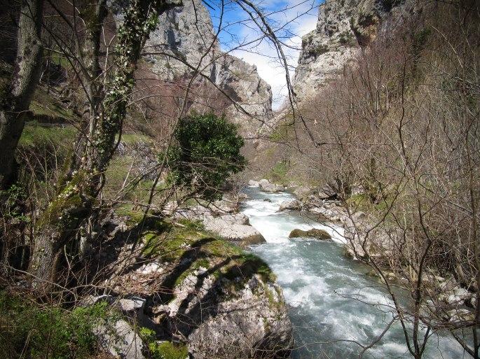 Picos-1358