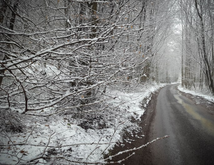 snowsurrey-134931