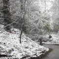 snowsurrey-135141